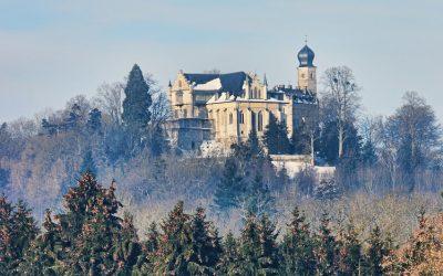 Christbaumschlagen im Herzoglichen Forst Callenberg: Samstag, 08.12.2018  und Samstag, 15.12.2018