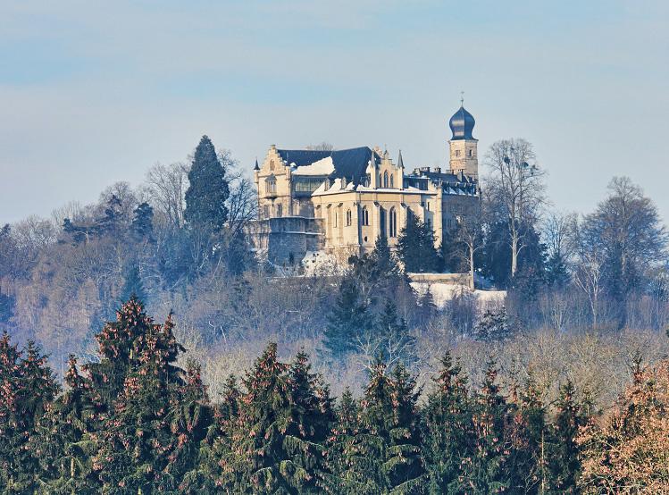 Christbaumschlagen im Herzoglichen Forst Callenberg am 07. + 14.12.2019 – jeweils 10-15 Uhr